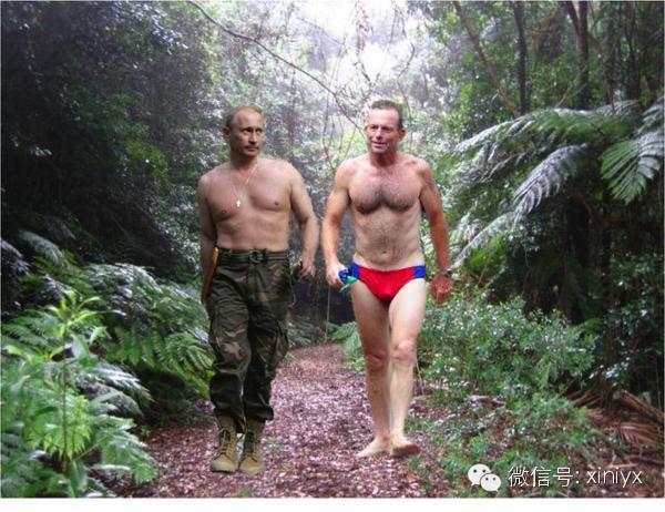 """是一个等量级的吗?澳总理放狠话将""""撂倒""""普京 网友评论笑翻了-澳洲唐人街"""