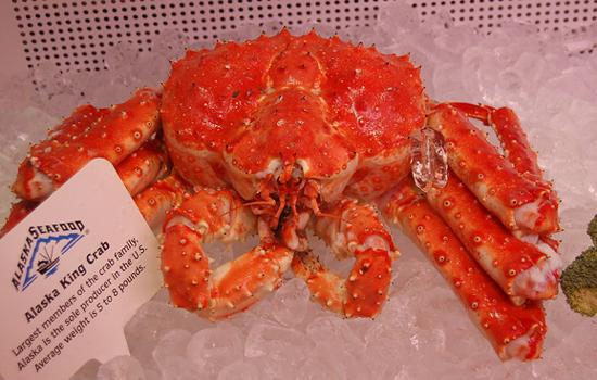 澳洲不止龙虾美味!皇帝蟹更鲜美肥厚-澳洲唐人街