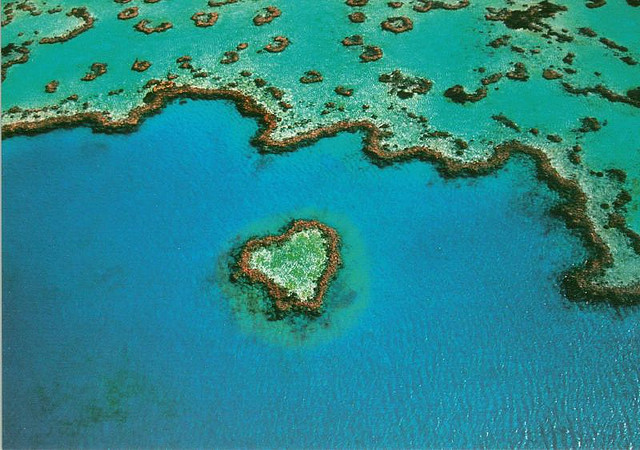 heart-shaped-reef