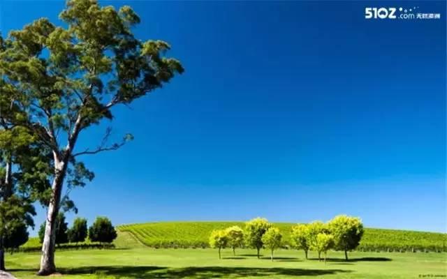 在这个自由的国度,盘点澳洲人最想去的8个好地方-澳洲唐人街