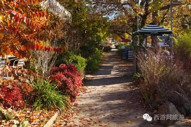 招募:免费去哪儿第十期 见证上帝的私人花园——Marysville-澳洲唐人街