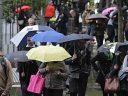 2016墨尔本最适宜步行的街区排名出炉!来看看你居住的地方上榜了没?