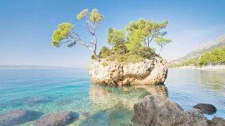 全澳海岛TOP榜单 | 椰林树影、白沙海浪,给你不一样的夏日梦想