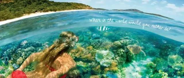 全澳海岛TOP榜单 | 椰林树影、白沙海浪,给你不一样的夏日梦想-澳洲唐人街