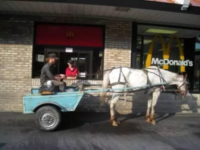 無奇不有:澳男骑马去麦当劳买冰淇淋,结果惨遭拒绝-澳洲唐人街