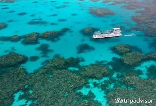 澳洲7大不可错过的尖叫体验,上天下海撩鳄鱼-澳洲唐人街