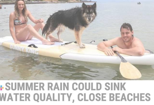 敲警钟!墨尔本多个海滩被检测出有重度污染,夏天去海边浪前请先看看这篇文章-澳洲唐人街