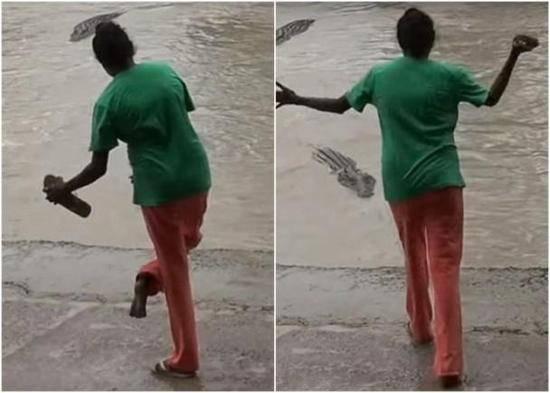 澳洲著名海滩发现鳄鱼,土澳日常又解锁一项-澳洲唐人街