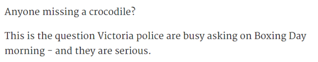 昨天墨尔本警方在大街上抓了條乱爬的鳄鱼,現呼籲牠的主人盡快把鳄鱼領回⋯⋯-澳洲唐人街