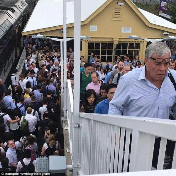 悉尼今天大罷工,1300趟火車取消,交通一片混亂-澳洲唐人街