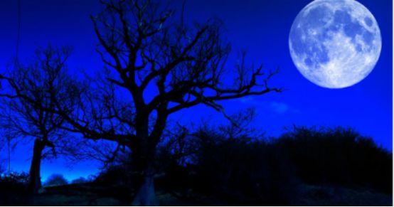 明晚,150年一見的「超級藍血月」在澳洲震撼登場!錯過就是一輩子!-澳洲唐人街