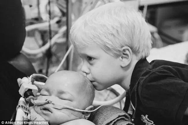 澳洲4歲男孩勇敢獻出骨髓救弟弟!失敗後對媽媽說:對不起,我沒能幫你留住他-澳洲唐人街