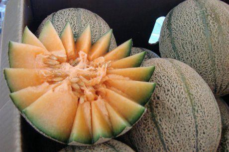 澳洲哈密瓜疑含李斯特菌致2人死亡,專家建議已購的哈密瓜應扔掉或退貨-澳洲唐人街