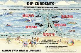 澳洲小哥路过海边,看到了此生难忘的一幕,8个人正被活吞!他发疯般冲进海里....